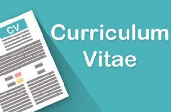 Maturità: Curriculum dello Studente slitta al prossimo anno, ci sarà solo il Supplemento Europass
